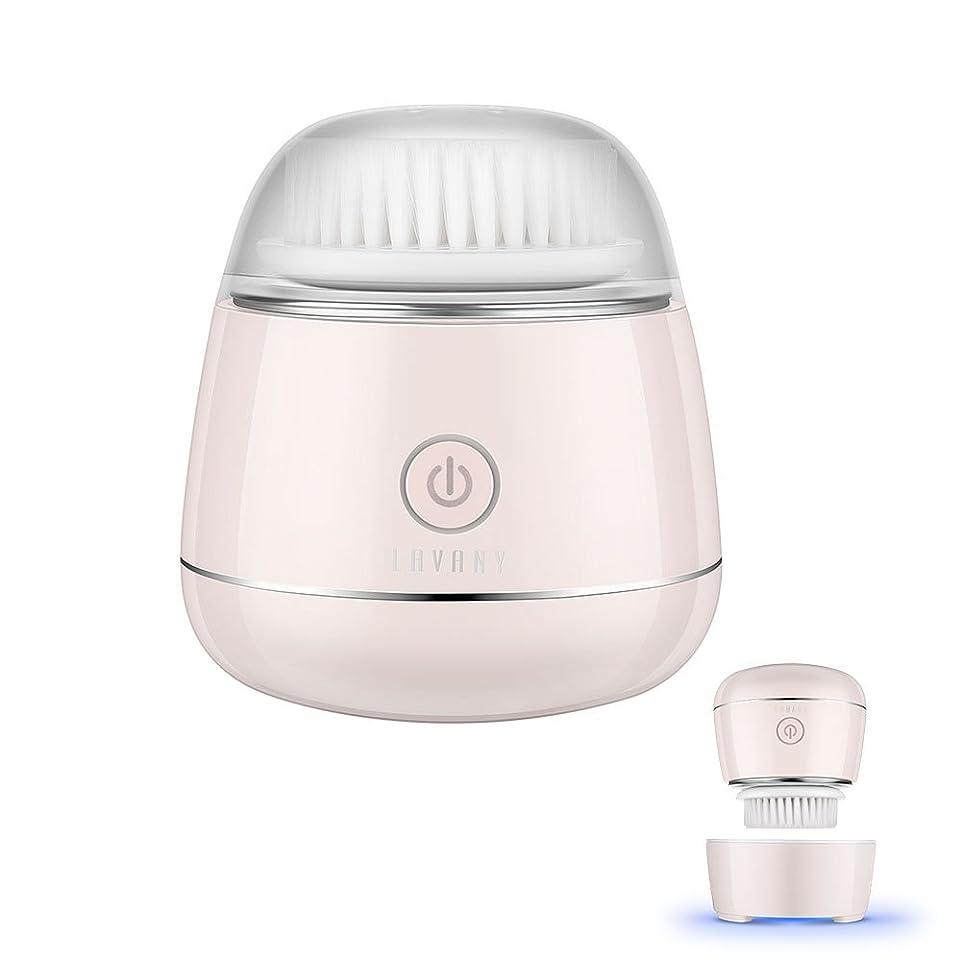 耕すポインタ古風なLavany 洗顔ブラシ 電動 洗顔器 洗顔用フェイスブラシ 音波振動 毛穴ケア 二段階速度 IPX7防水 USB充電 SR-03L