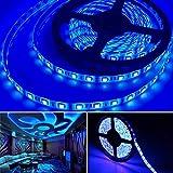 Bkinsety Tiras LED 5M 300LEDs 5050 Tira LED Flexibles Impermeable para Decoración de Fiestas de Cocina de Sala(Azul)