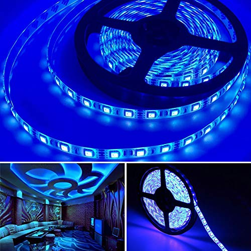 Bkinsety Striscia Luminosa LED 5M 300 LEDs 12V Luce Nastro Flessibile Decorazioni Esterni ed Interni(Blu)