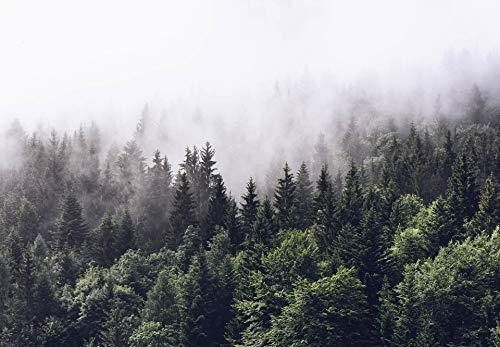 Fototapete Nebeliger Wald Papiertapete Wald Baum Natur Landschaft in grün weiß 366 x 254 cm XXL Wandtapete Wandbild 118852