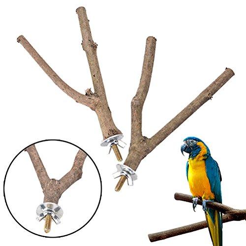 SNNplapla 2pcs Bird Parrot Natural Wood Fork Stand Perch Toy-14CM Birdcage Stands Pet Bird Toys 5.5inch