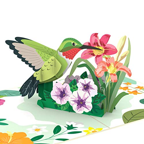 Liif Hummingbird Mother's Day 3D Greeting Pop Up Card Card For All Occasions, Father's Day, Happy Birthday, Anniversary, Retirement, Thinking Of You, Get Well, Hummingbird Gifts For Women, Bird Lover