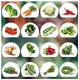 Prademir Gemüse Samen Set - 16 Gemüse Sorten aus Portugal | 100% Natur Saat (Keine Chemie, Gentechnik, künstliche Wachstums-Helfer)