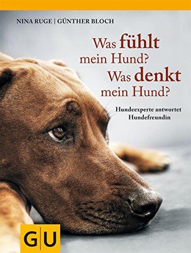 Was fühlt mein Hund? Was denkt mein Hund?: Hundeexperte antwortet Hundefreundin (GU Tier Spezial)