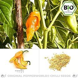 Pepperworld Monkeyface Bio Chili-Saatgut, 10 Korn, Chili-Schote zum Anpflanzen, fruchtig-exotisch