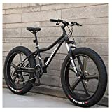 LNDDP Bicicletas montaña 26 Pulgadas, Bicicleta montaña rígida Acero con Alto Contenido Carbono, Bicicleta montaña Fat Terra All Terrain, Bicicletas Antideslizantes para Hombres