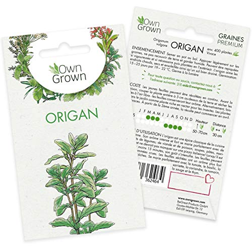 Graines d'origan (Origanum vulgare), semences d'origan cultivé OwnGrown, Semis pour environ 200 plantes