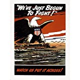 Wee Blue Coo War Wwii USA American Eagle Navy Air Force Art