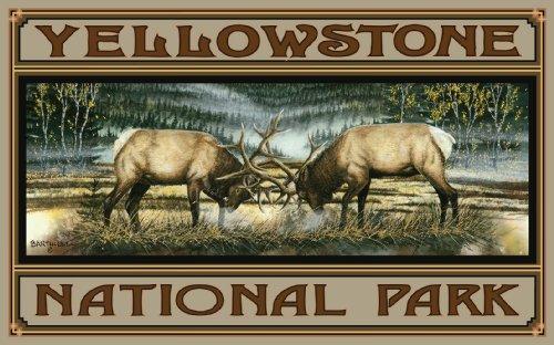 Northwest Art Mall Yellowstone National Park Clash of The Titans CT Poster Druck von Dave Bartholet, 28 x 43 cm