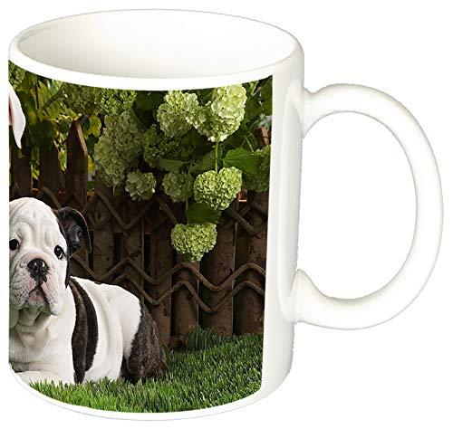 MasTazas Bulldog Ingles English Bulldog Puppy Tasse Mug