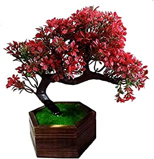 HYPERBOLES Artificial Bonsai Flower Plant with Wooden Pot - 8 Inch