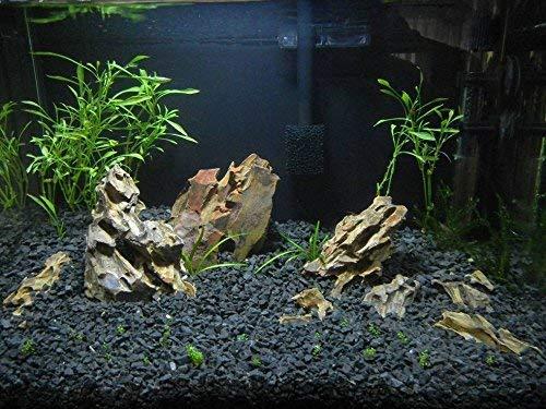 RETNE Natur schwarz Kies Basalt Aquarium Bodengrund (KIES 3-5mm, 5Kg)