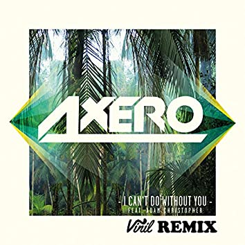 I Can't Do Without You (feat. Adam Christopher) [Vinil Remix]