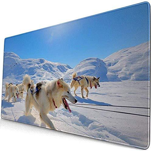 Schlitten-Hund läuft auf der Schnee-Mausunterlage Mousepad Mousepad Rutschfester Gummi langlebiges Gut