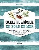 Cueillette & récolte en bord de mer - Reconnaître et cuisiner plantes, algues, coquillages, crustacés, poissons