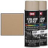 SEM 15143, Sandstone, Color Coat, Vinyl Paint (2)