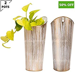 Gardener Shopping Decorative Wall Hanging PLANTERS for Plants and Flowers (2 German POTS)