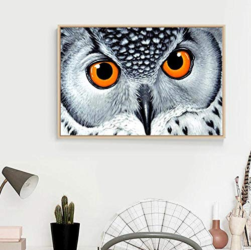 Diamantmalerei 5D DIY Diamantmalerei-Kits für Erwachsene 3D DIY Diamantstickerei'Owl' Diamond Painting Wanddekoration Home Decoration-Diamantmalerei_50x40cm