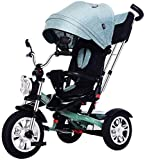 WDCC Cochecito de bebé Cochecito de bebé portátil Triciclo, Cochecito de dirección 4 en 1, Bicicleta de Aprendizaje con barandilla Desmontable, Capota Ajustable, arnés de Seguridad, Pedal plegabl