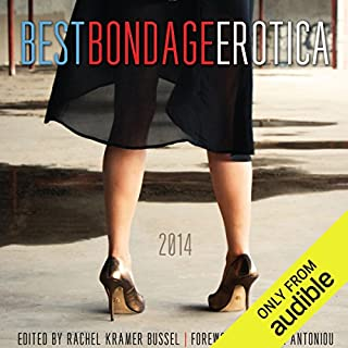 Best Bondage Erotica 2014 cover art