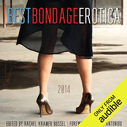 Best Bondage Erotica 2014 cover art