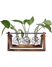 SUNREEK Skrivbord glasblomkruka glödlampa vas, 3 glaslöksvaser med retro massivt trästativ för hydroponik växter hem trädgård bröllop inredning