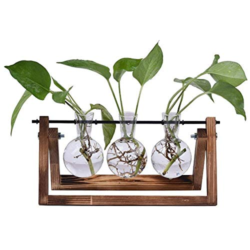 Sunreek Glas-Blumenvase, 3 Glaskolben mit Retro-Ständer aus massivem Holz, für Hydrokulturpflanzen, für Zuhause, den Garten, Hochzeiten, als Dekor