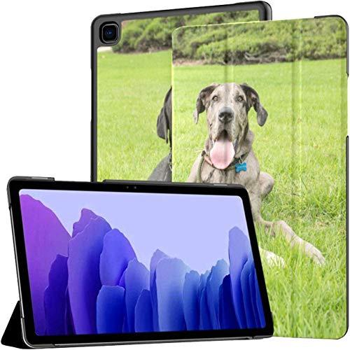 Funda para Samsung Galaxy Tab A7 Tableta de 10,4 Pulgadas 2020 (sm-t500 / t505 / t507), Cachorros descansando después de una Caminata Larga en el Parque, Funda con Soporte de múltiples ángulos con AC