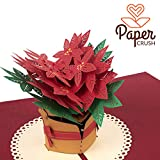 """PaperCrush Pop-Up Karte Weihnachten """"Weihnachtsstern"""" [NEU!] - 3D Weihnachtskarte für Frauen, Geschenkkarte mit Poinsettia zu Weihnachten, Grußkarte zur Adventszeit oder Weihnachtszeit"""