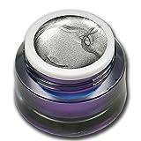 5ml Metallic Farbgel Silber Silver Premium Colorgel RM Beautynails