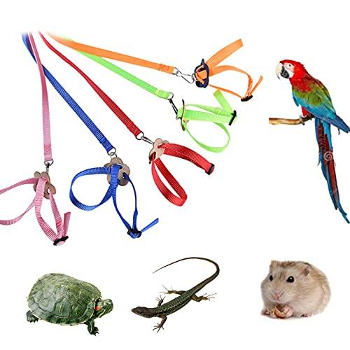 crazerop 1 Stück Vogel Leine Multifunktional Vogelgeschirr, Einstellbar Flying Training Rope Trainingsseil Für Papagei Wellensittich Nymphensittich Kleine Vögel, Zufällige Farbe