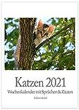 Edition Seidel Premium Katzen Wochenkalender 2021 Wandkalender Literarischer Kalender Literaturkalender Katzenkalender mit Sprüchen und Zitaten (Wandkalender DIN A5)