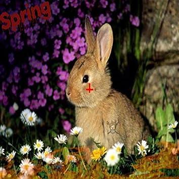 Feel Like Spring