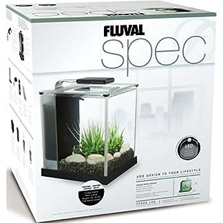 Fluval Spec 10515 Nano-Aquarium, 10 Liter