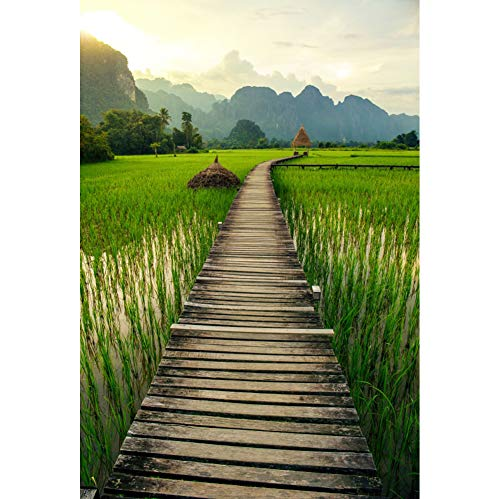Laeacco Green Rice Field Backdrop 6x9ft Vang Vieng Laos Vinyl Photography Wooden Board Bridge Path Summer Tropical Nature Scenery Mountain Sunset Countryside Tour Wedding Portrait Shoot Decor Banner -  18x27NBK18443AA