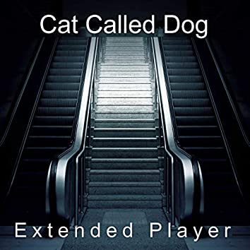 Extended Player