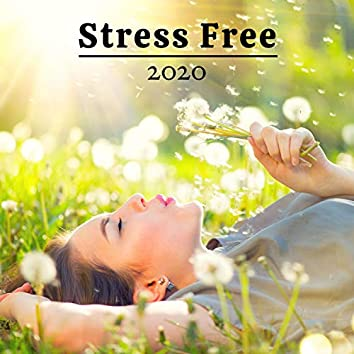 Stress Free 2020 - Sound Therapy For Relaxation