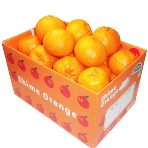 「お試し愛媛ポンカン3×2」お試し品 愛媛ポンカン6kg(3kg×2箱) 手でむいてみかんのようにパクパク内皮も一緒に食べられる手軽さで大人気 果物 フルーツ 柑橘 ポンカン 通販