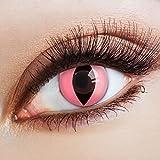 aricona Kontaktlinsen - Leuchtend pinke Kontaktlinsen Motivlinsen Katzenaugen - bunte farbige Kontaktlinsen pink ohne Stärke für Karneval, Fasching, und Kostüm-Partys, 2 Stück