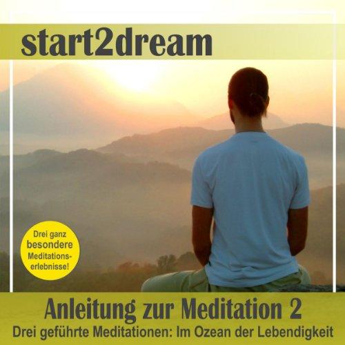 Anleitung zur Meditation - Teil 2 audiobook cover art