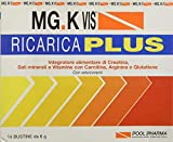 Mg.K Vis PP9397 Ricarica Plus - Confezione da 14 Bustine