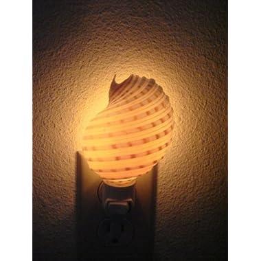 Spotted Banded Tun Sea Shell Nightlight Bathroom Kitchen