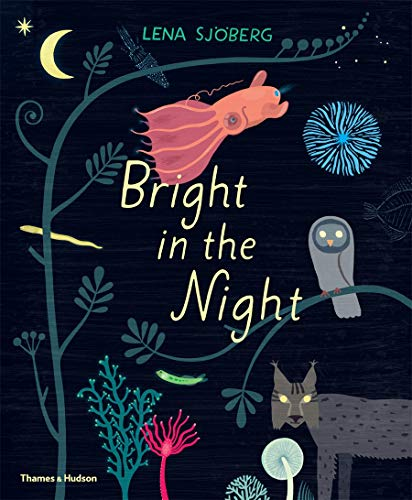 Image of Bright in the Night