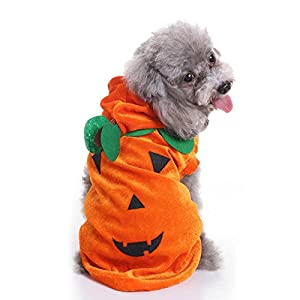 AAA226 Lovely Halloween Pumpkin Costume pour animaux de compagnie Party Fancy Dress Dog Apparel Hoodie