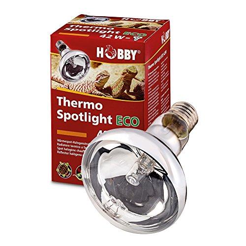 Hobby 37562 Thermo Spotlight Eco, 42 W