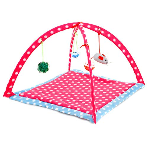 IVYSHION Tente pour Animaux de Compagnie avec Coussin, Tente Pliable pour Chat en Toile Amovible Lavable Jouet Tente Lit pour Chat avec Pendaison Souris Poupée Bell Ball