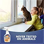 Earth Friendly Products ECOS Window Cleaner with Vinegar, 22-Ounce, Never Tested on Animals