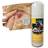 EMMA ♥ Spray de Aluminio para Caballos y Perros I Vendaje para heridas en Spray Protecci...