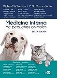 Medicina interna de Pequeños Animales, 6ªEd (Nueva Edición) - tapa dura- 24 Agosto 2020