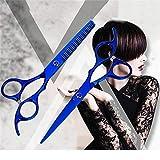 2 / 10pcs Haarschere 6 Zoll Friseur Friseur Schneiden Professionelle Schere Edelstahl Ausdünnung Schere Barbershop Salon Set2pcs